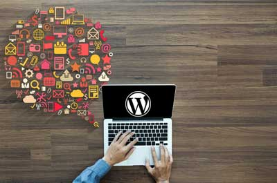 wordpress-types-of-website