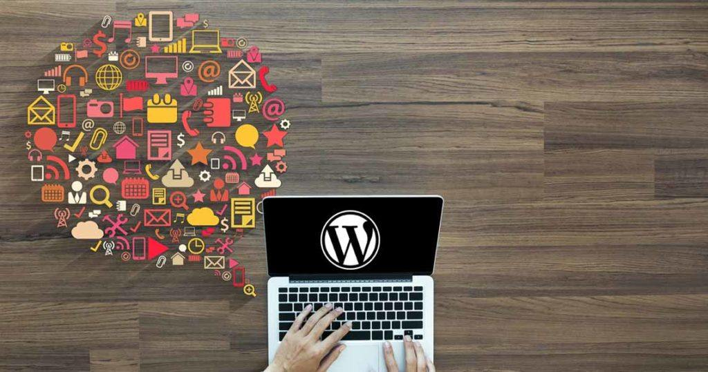 wordpress types of website