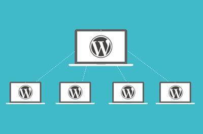 Wordpress multisite plugins